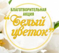 beliy_cvetok11092019